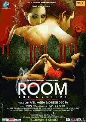 Room The Mystery 2015 Hindi 720p WEBRip 750MB
