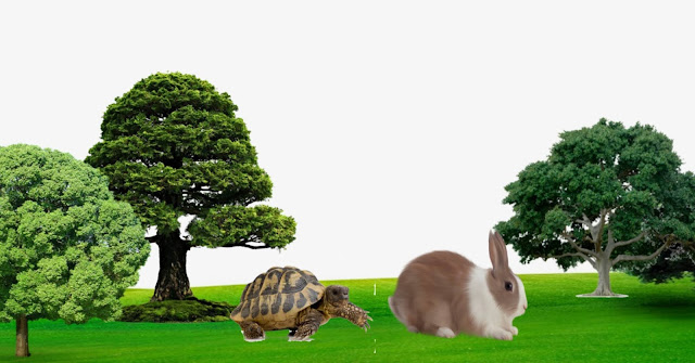 Rabbit and Tortoise Story in hindi, kachua aur khargosh ki kahani