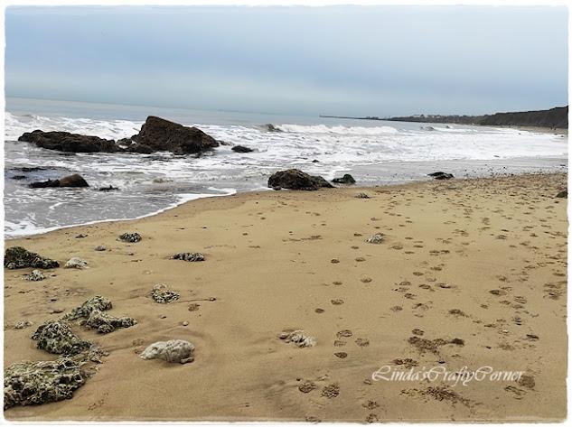 beach sea view walks