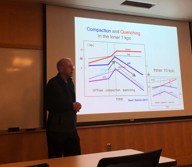 Joel Primack, UCSC, discusses prolate structure of early galaxies at UCI Seminar (Source: Palmia Observatory)