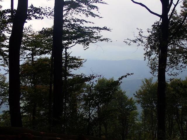 Góra Policyjna nie oferuje szerokich panoram