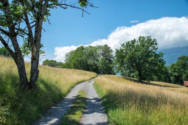 Historische Höhenweg von Bendern nach Schellenberg  Wandern Liechtenstein 01