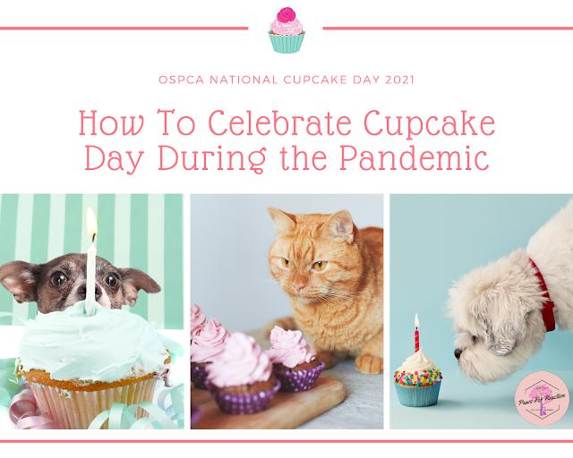 COVID-19 impacts how OSPCA celebrates National Cupcake Day on February 22, 2021