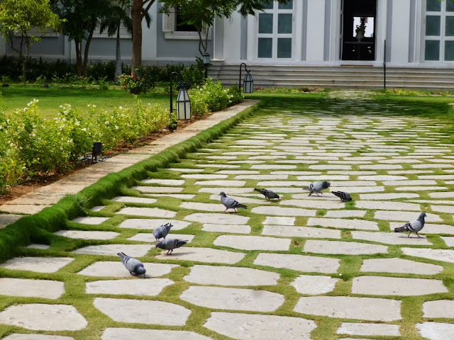 Falaknuma Palace pictures: pigeons in the courtyard