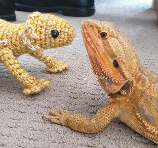 A crochet bearded dragon next to a real bearded dragon.