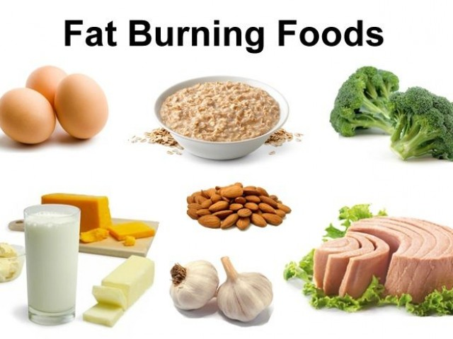 The Healthy Fit Kitchen: Diet tips for losing excess fat and gaining ...