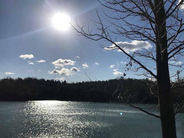 イメージ画像:日の差す公園