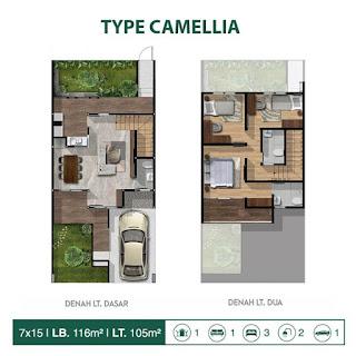 Type camellia