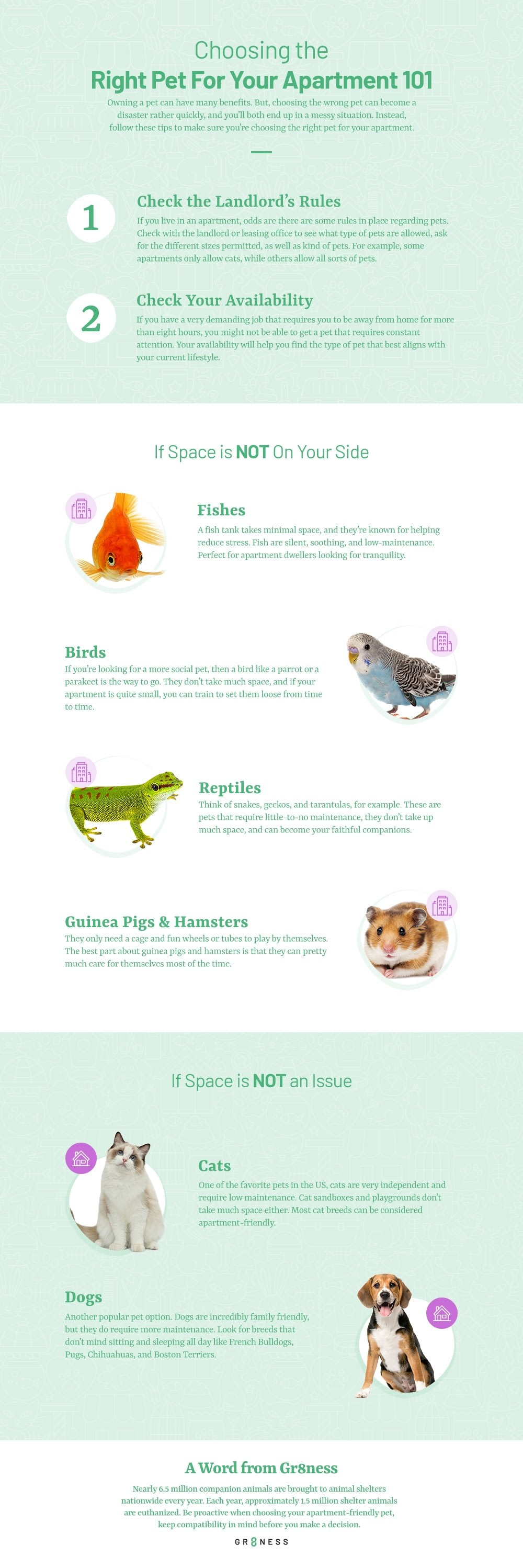 Choosing the Right Pet for Your Apartment #infographic #Pets #Pet Apartment #infographics #Right Pet #pet for apartments #Infographic #Life Hacks