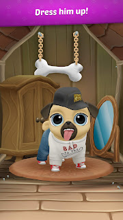 Köpek Bakma Oyunları 🐾 Pug Paşa
