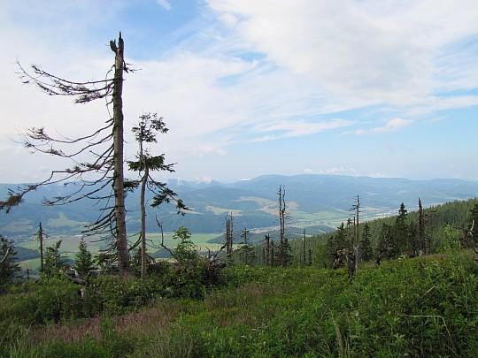Widok na dolinę Hronu za siodłem pod Košariskami.