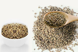 अजवाइन अमृत औषधि , Health Benefits of Ajwain Carom Seeds in Hindi, अजवाइन के फायदे, अजवाइन से पेट के रोगो के लिए उपचार, ajwain ke fayde , अजवाइन बेनिफिट्स , Ajwain Benefits, ajwain ke aushadhi gun, अजवायन के औषधीय गुण, अजवाइन के लाभ, Carom Seeds ke fayde, Carom seeds ke fayde