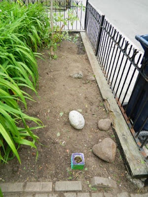 Toronto Summer Garden Cleanup in Leslieville After by Paul Jung Gardening Services--a Toronto Organic Gardener