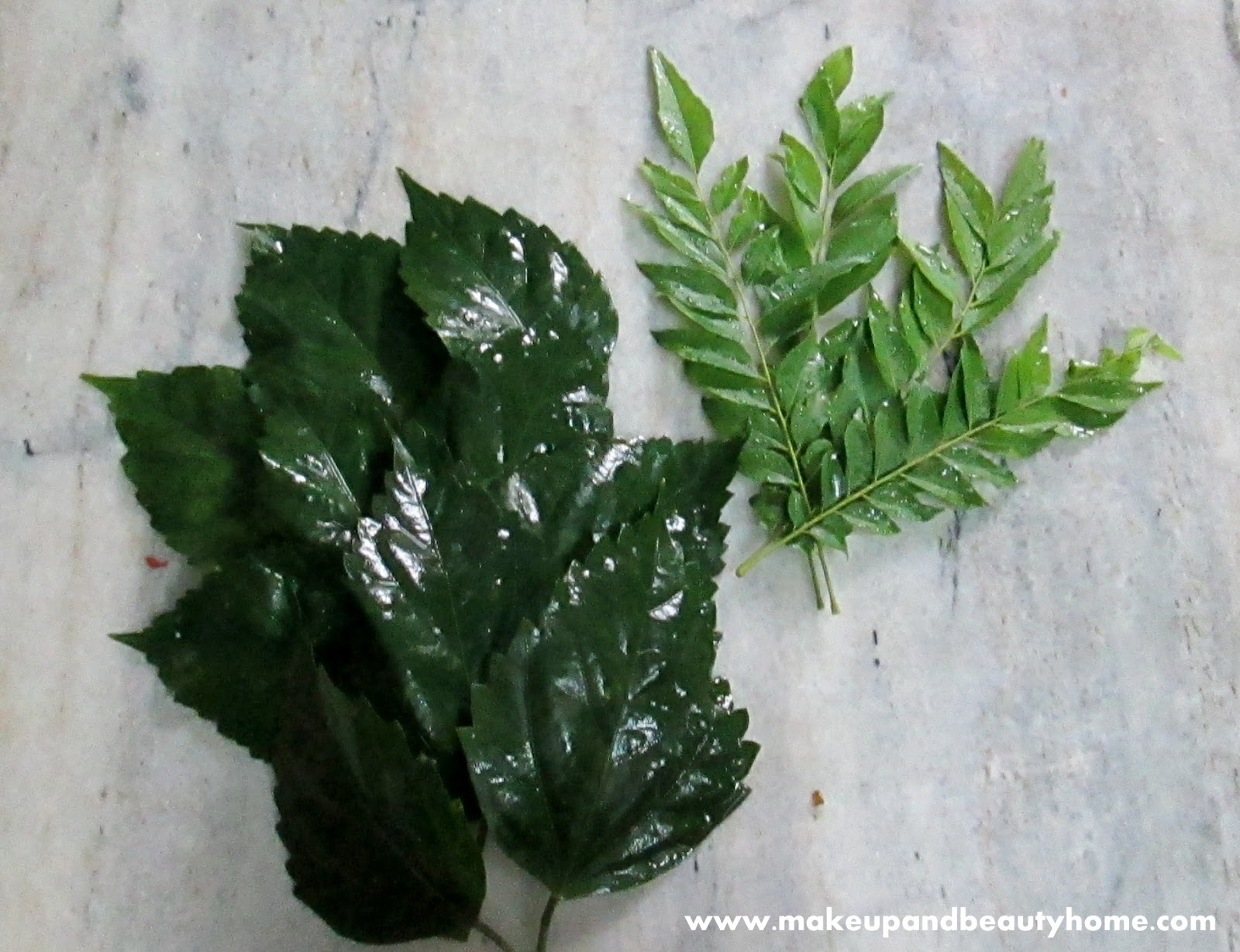 Diy Hibiscus And Curry Leaves Hair Pack To Prevent Hair Fall
