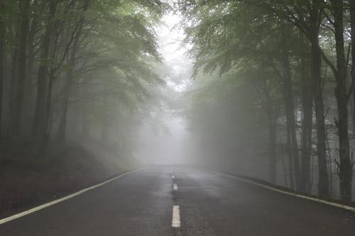Carretera sin fin en medo de un bosque.  Como será el futuro