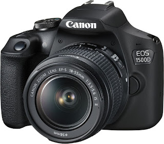 Best entry level DSLRs