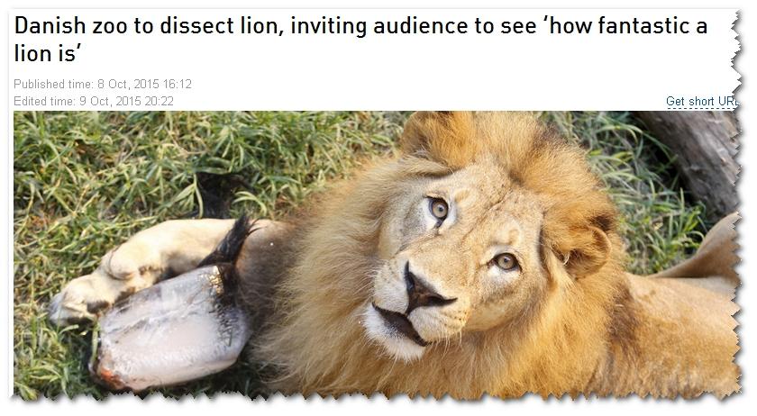 Lejon dissekerades framfor barn