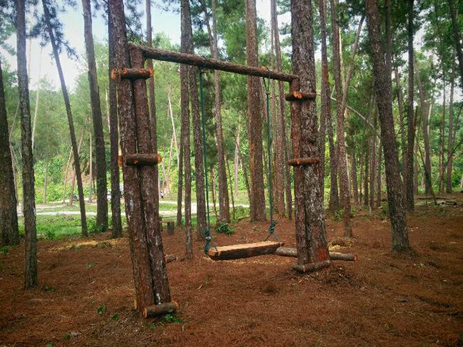 3-tarikan-utama-di-terap-pine-forest-kulim-kedah