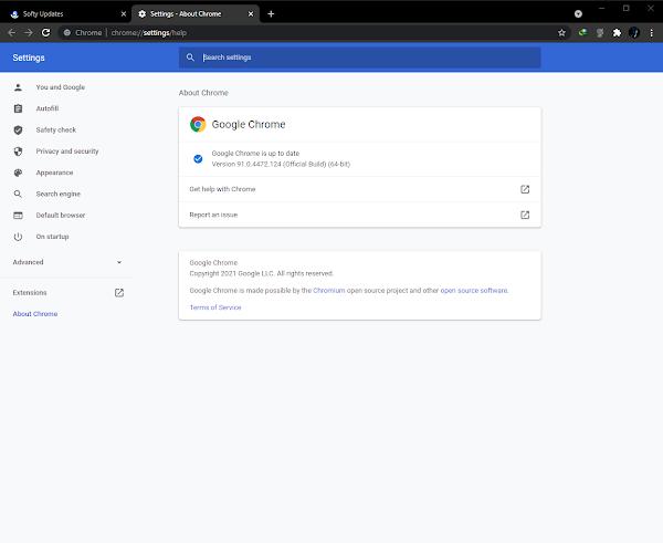 Google Chrome Browser 91.0.4472.124