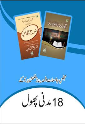 18 Madani Phool - Majlis-e-Jamiat pdf in Urdu