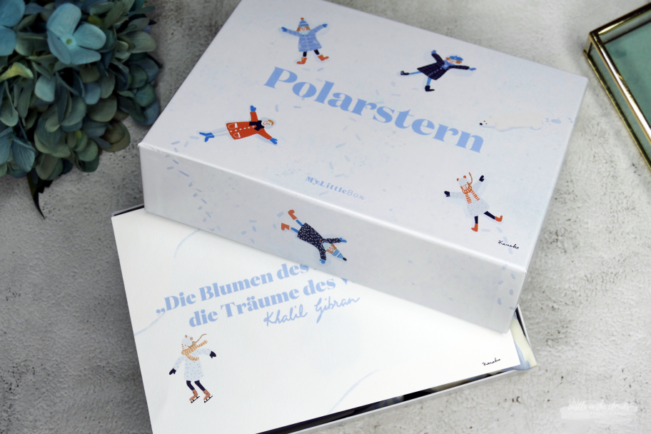 My little Box Polarstern - Februar 2020