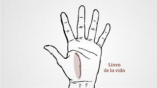 Lectura de la mano. Lectura fría con respuesta 07