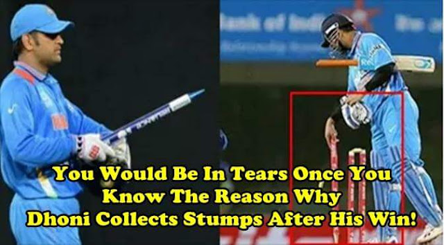 Why dhoni collects stumps