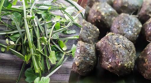 Changalamparanda (Veld grape) Idi Chammanthi