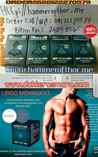 hammerofthor.my.id