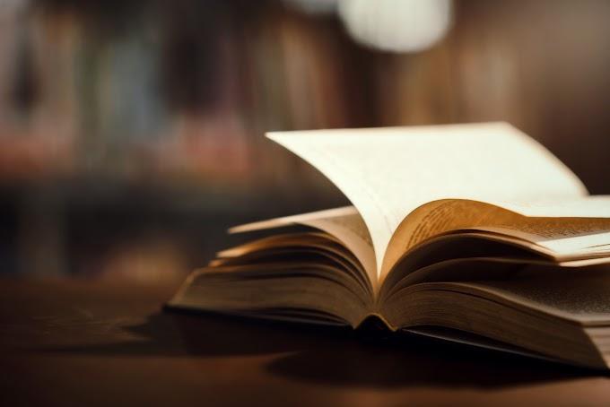 Qual sua melhor leitura de 2020?