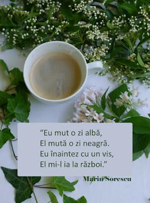 citat viata, jurnal cu flori