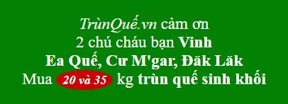 Trùn quế về Ea Quế, Cư Mgar, Dak Lak