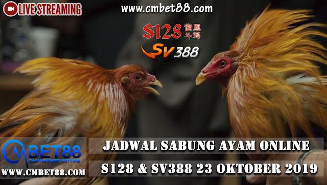 Jadwal Sabung Ayam