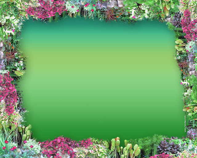 flower wallpaper for kindle fire - photo #36