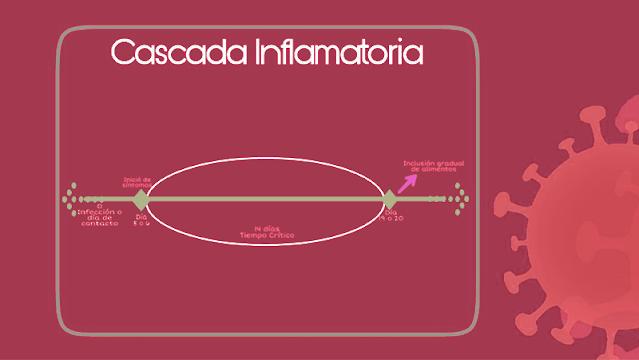 Cascada inflamatoria en el Covid 19