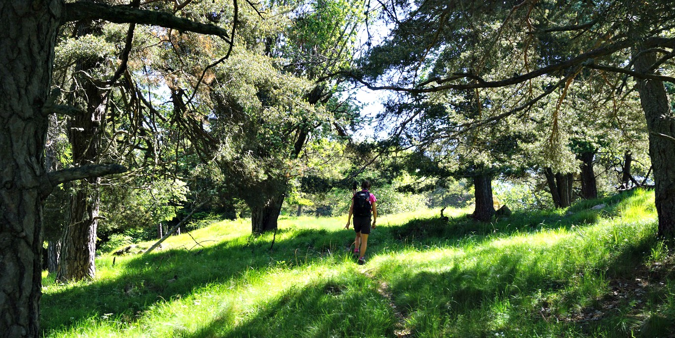 Ridge trail to Cime de Rocaillon