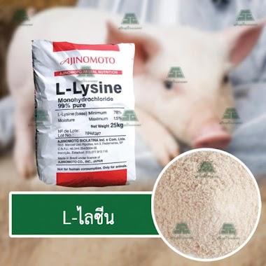 L-ไลซีน