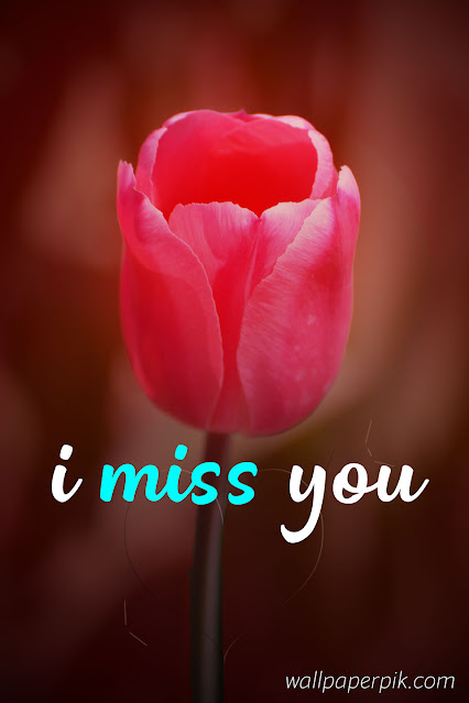 i miss you image with flower