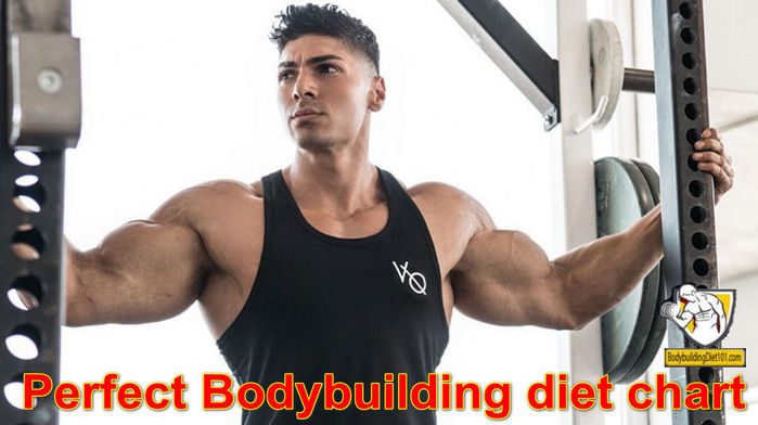 The Body builder diet will benefit you to drop overabundance weight