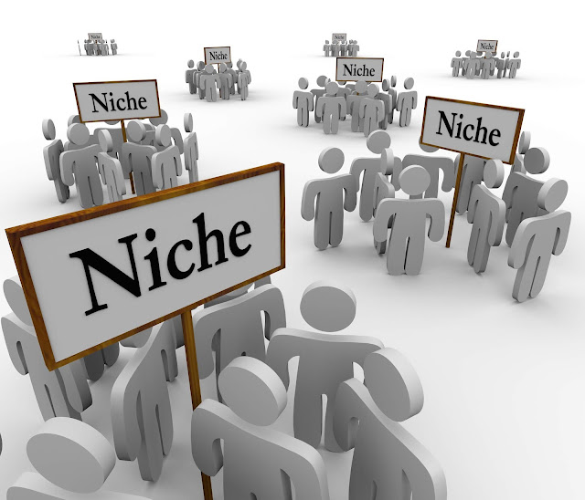 Single Niche Vs Multiple Niche - What Should You Go With?