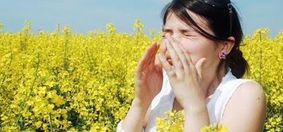 Evitar Rinitis Alérgica