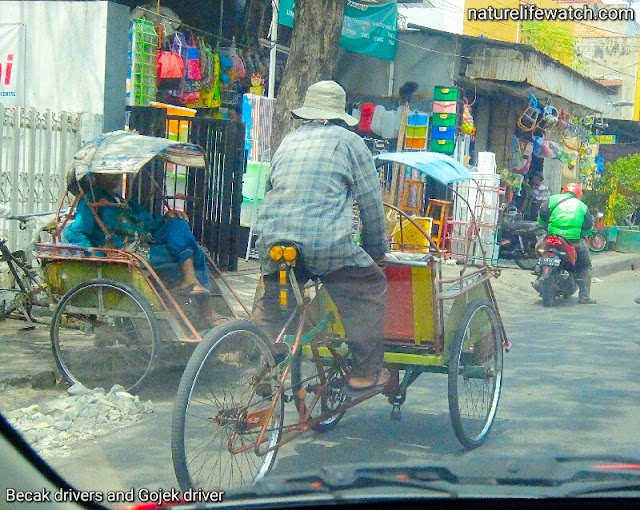 Human powered tricycle rickshaw in Indonesia