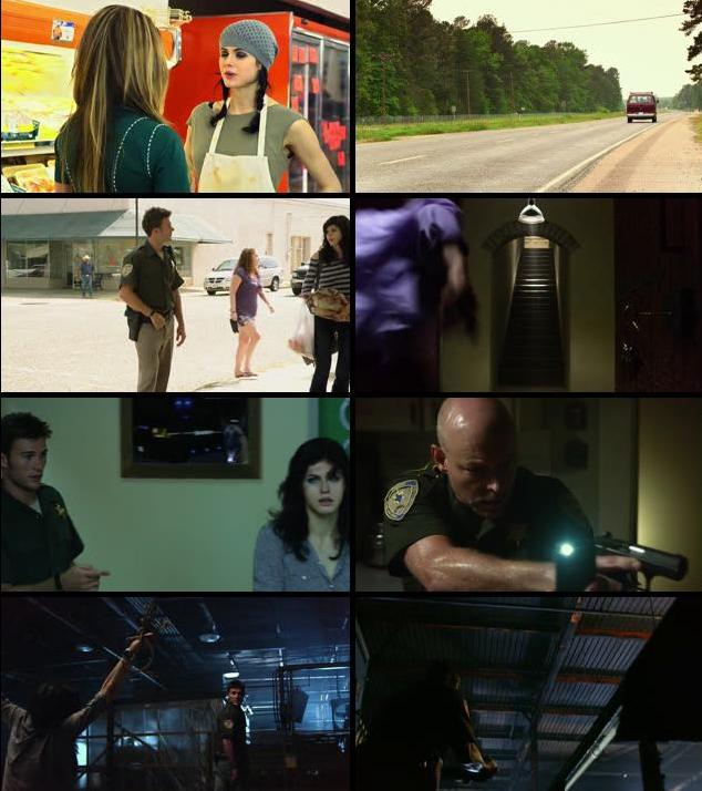Texas Chainsaw 2013 Dual Audio Hindi 480p BluRay