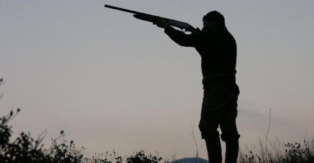 Βαρύς ο πέλεκυς της δικαιοσύνης για παράνομο κυνήγι στην Πελοπόννησο