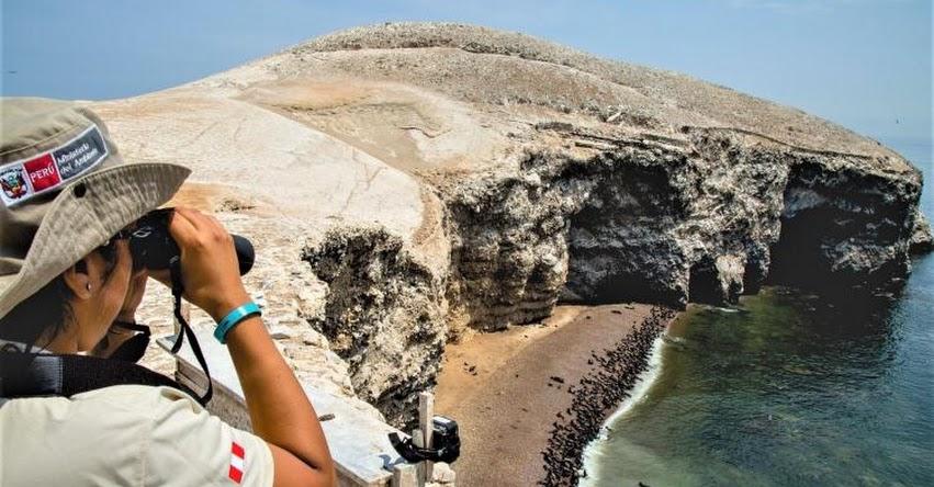 Fin de semana largo movilizará a 500 mil turistas nacionales, según la Cámara de Comercio de Lima (CCL)