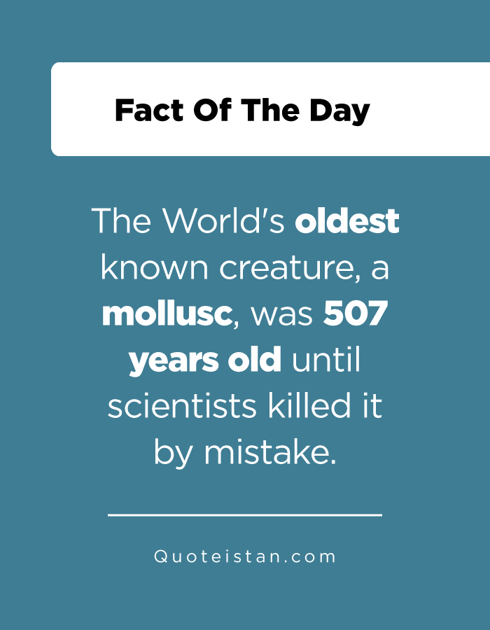 The World's oldest known creature, a mollusc, was 507 years old until scientists killed it by mistake.