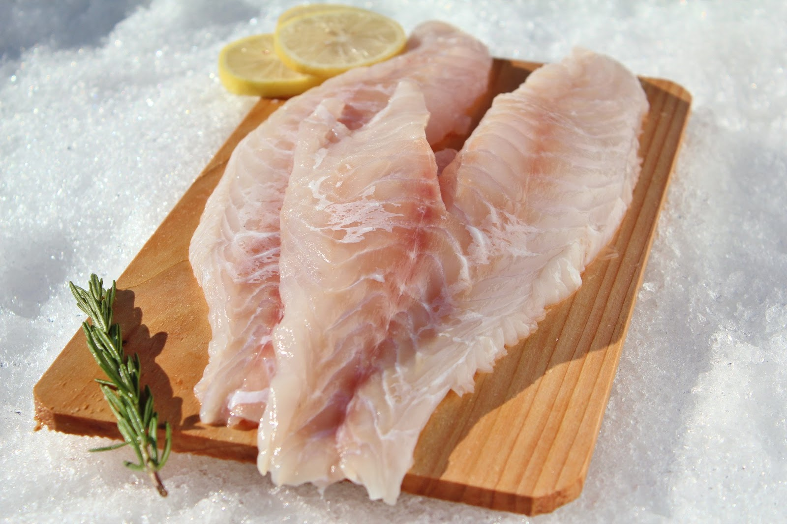 Frozen Grouper Fillets Suppliers - Frozen Grouper Supplier, Grouper