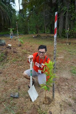 Saya melakukan tree planting