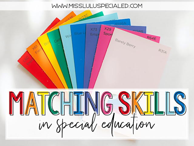 Matching Skills in Special Education with rainbow colored paint swatches