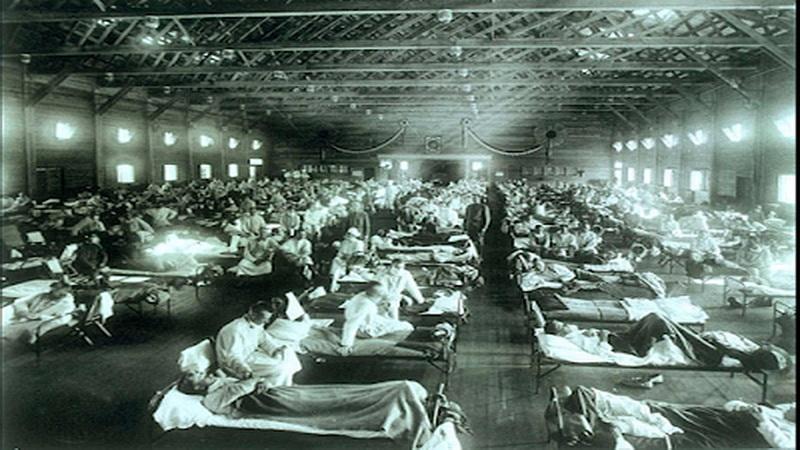 virus flu H1N1